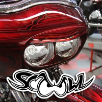 The SCOOWL™ Fairing Extension